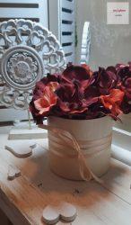 Hortenzia Virágbox 12 cm átmérőjű dobozban
